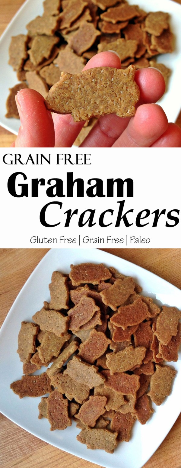 Grain Free Graham Crackers.jpg