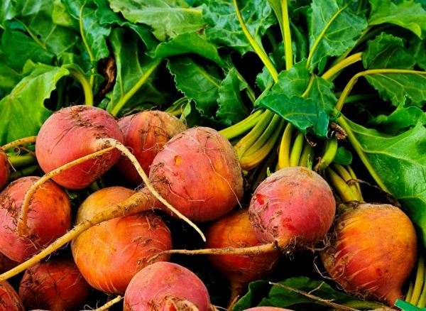 golden-beets.jpg