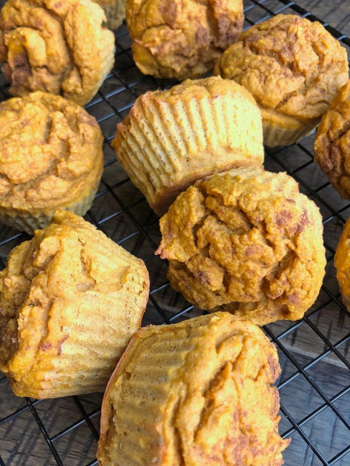 Pumpkin Protein Muffin (6)
