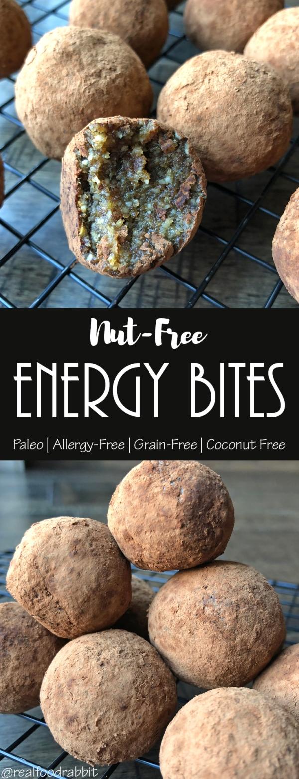 Nut Free ENERGY Bites.jpg