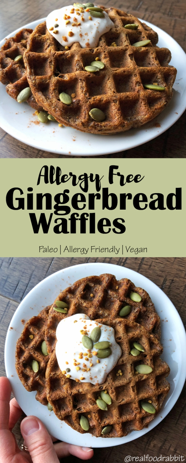 Allergy Free Gingerbread Waffles